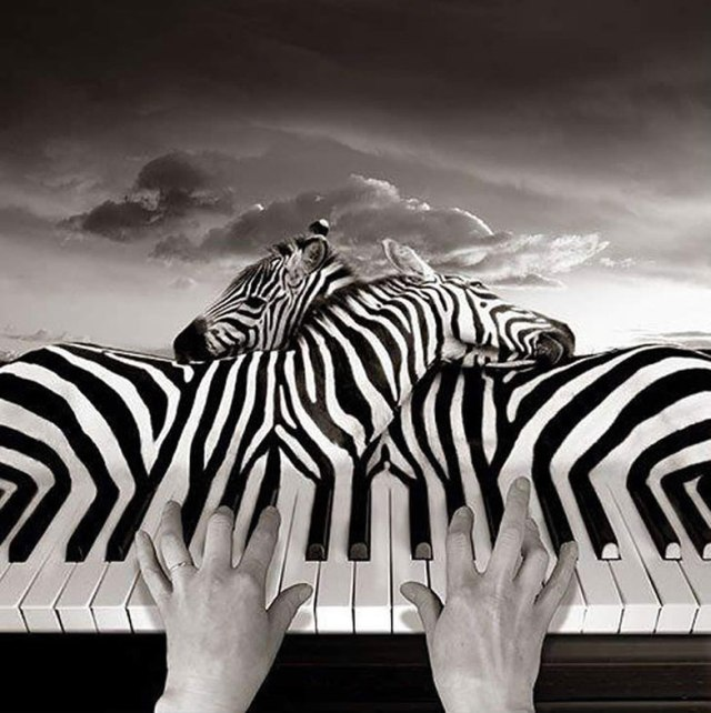 Thomas-Barbey-surrealismo-9